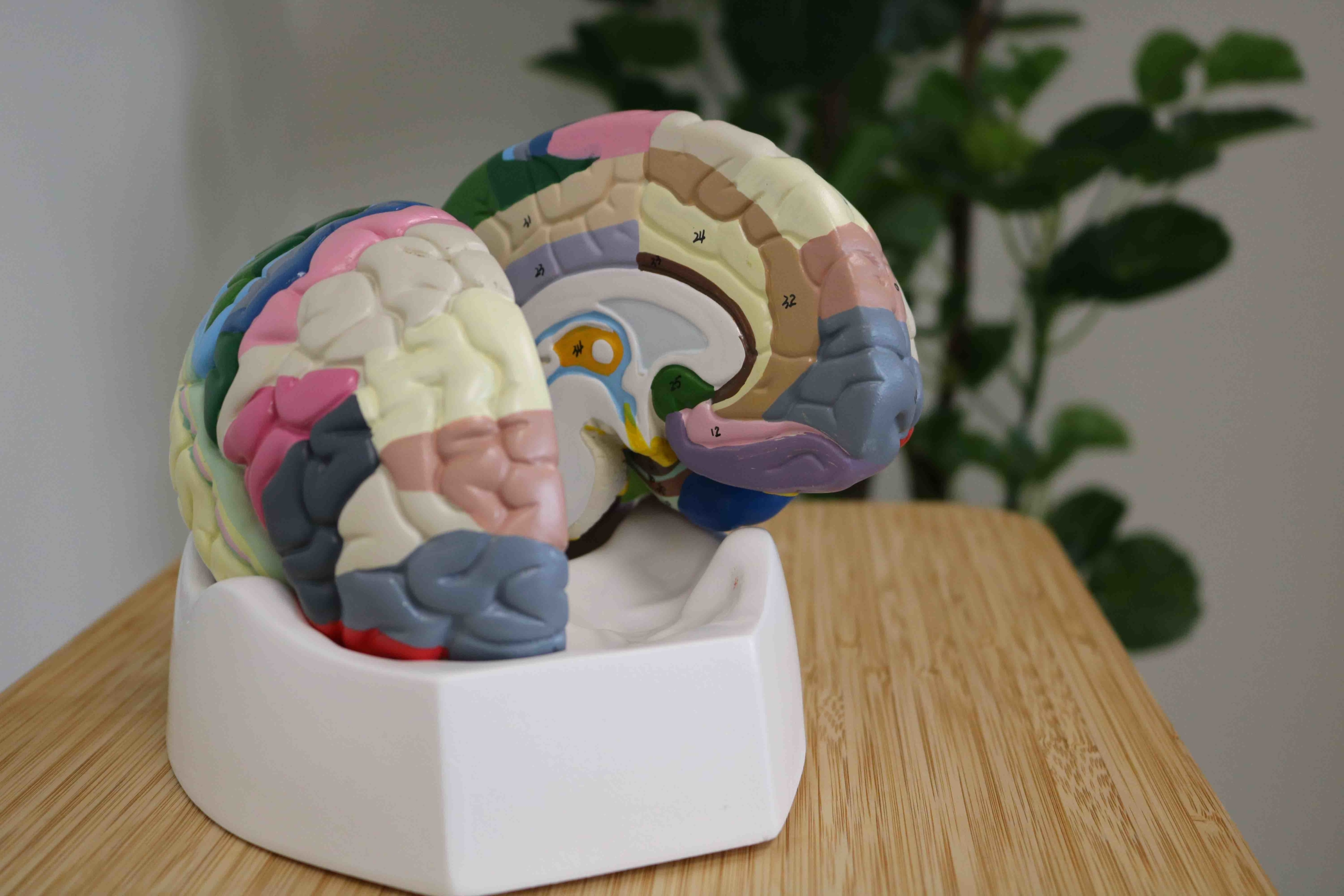 behandeling neurofeedback